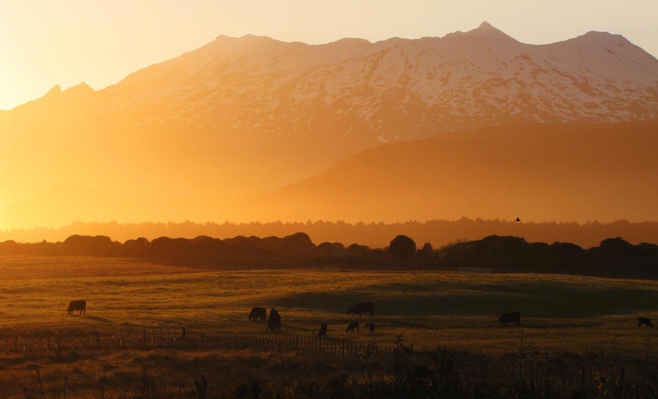 On a tendance à oublier que le Tongariro est situé dans un parc national. J'espère que vous aurez la chance d'admirer le coucher de soleil sur la vallée ! Mais après une journée de marche épuisante, il y a des chances pour que deviez vous contenter de cette photo.