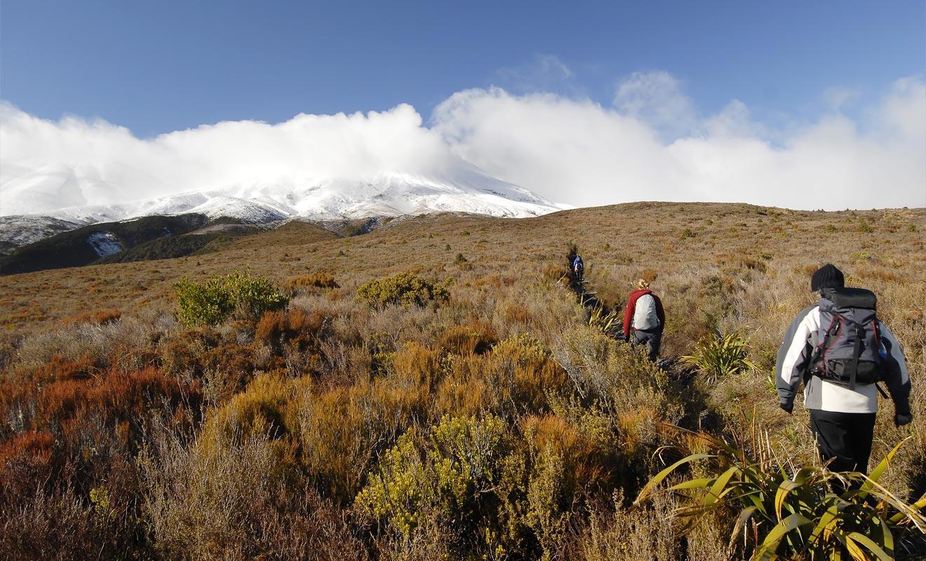 Dès que le lac Rotoaira sera en vue, vous pouvez considérer que le reste de la randonnée s'effectuera en pente douce jusqu'à l'arrivée.