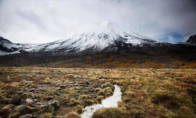 On peut pratiquement parler de désert, avec un sol volcanique rocailleux où poussent difficilement quelques bruyères et de la mousse. N'oubliez pas que la région a servi de décor naturel pour représenter le Mordor dans le Seigneur des anneaux.