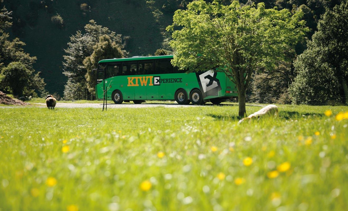 Le bus n'est pas le mode de transport le plus rapide, mais le réseau très étendu permet de se rendre partout dans le pays. Ce n'est pourtant pas le moyen le plus économique.