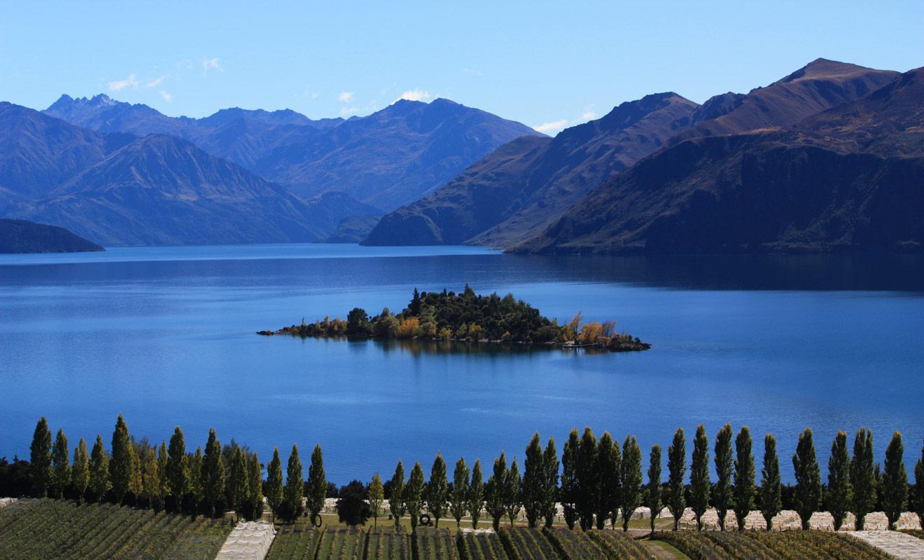 Le vignoble de Rippon Vineyard est la propriété de Nick Mills et se trouve juste en face de l'île de Ruby Island du lac Wanaka. Vous pouvez vous y rendre à vélo ou en voiture (il y a un parking gratuit).
