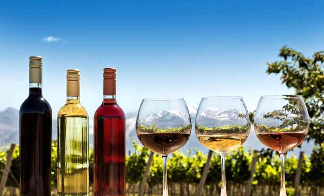 Si vous aimez faire la tournée des caves à vins, vous allez être servi ! Il existe de nombreuses région viticoles, au Nord comme au Sud.