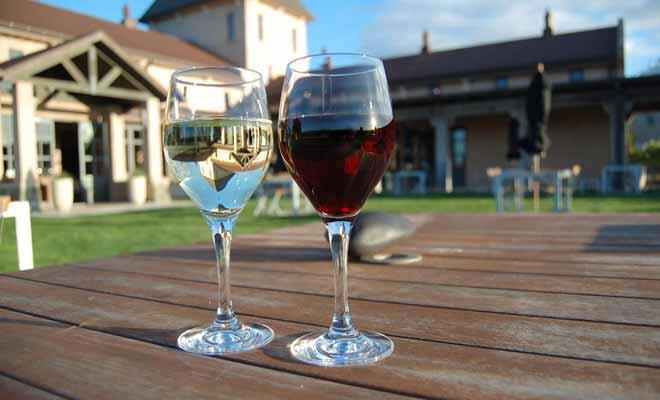 Peu de Français ont déjà eu l'occasion de goûter les vins de Nouvelle-Zélande. Pourtant, les productions néo-zélandaises sont désormais reconnues à leur juste valeur sur la scène internationale.