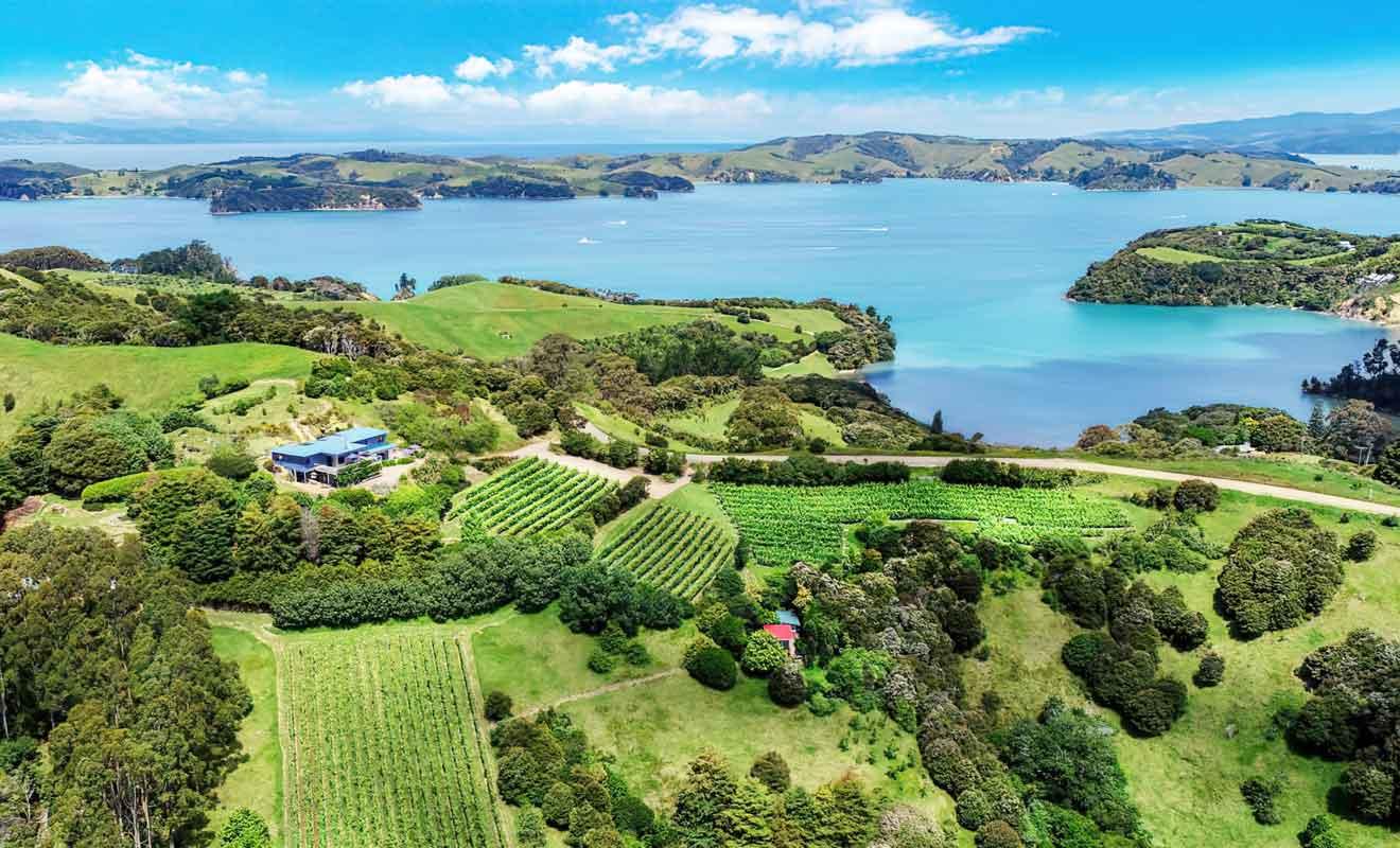Paradoxalement, le meilleur domaine viticole de l'île est aussi le plus difficile d'accès.