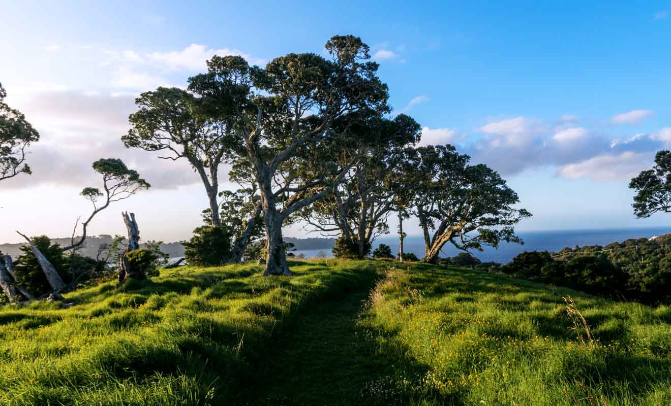 Si le nombre de randonnées n'est pas très élevé, c'est en partie à cause du relief et de la végétation très dense.