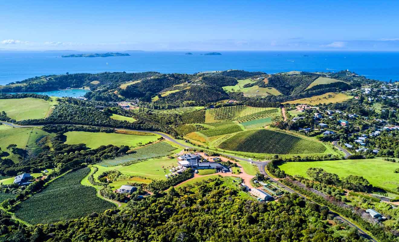 La vigne a valu à Waiheke son surnom de Wine Island.