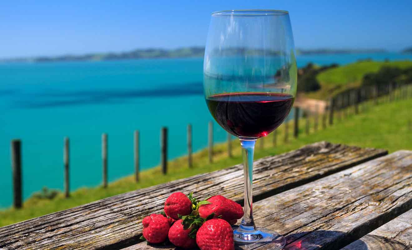 Les vignobles de Waiheke produisent surtout des vins rouges.