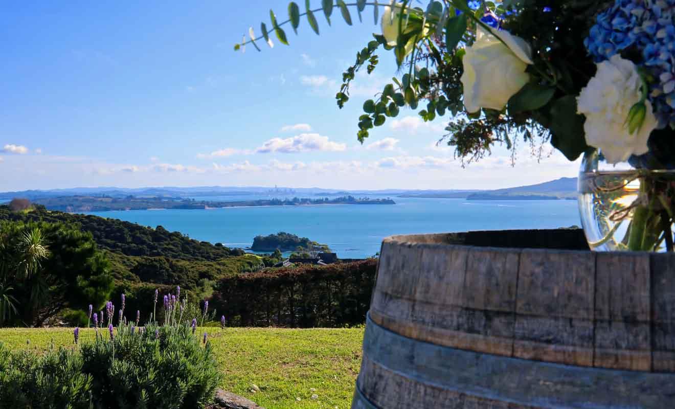 Même si vous n'appréciez pas le vin, la beauté de la vigne justifie le déplacement.