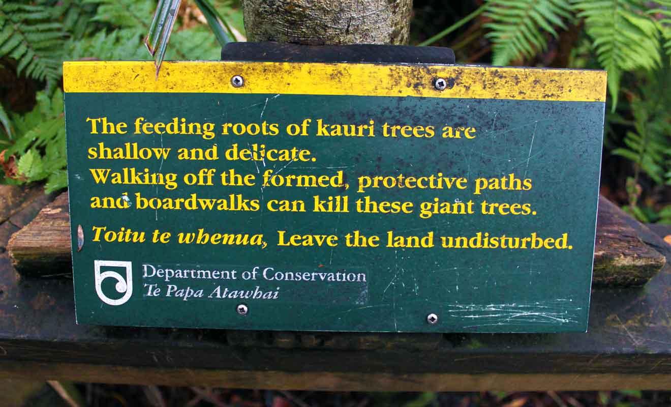 Le Département de la Conservation invite les visiteurs à ne pas s'écarter du sentier.