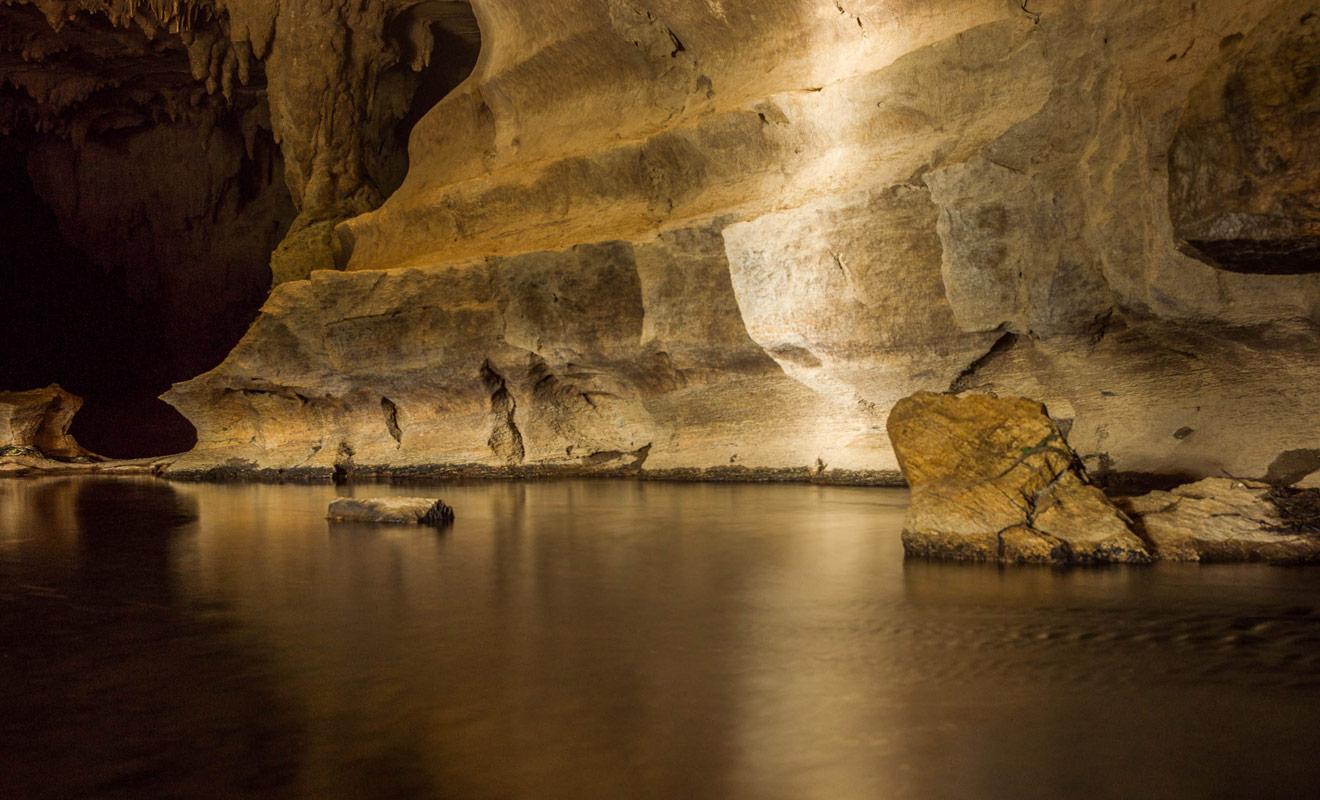 Selon la météo, il serait préférable de porter des bottes ou des sandales en plastique pour explorer les Waipu Caves car le sol peut être humide ou sous l'eau. La lampe torche est indispensable !