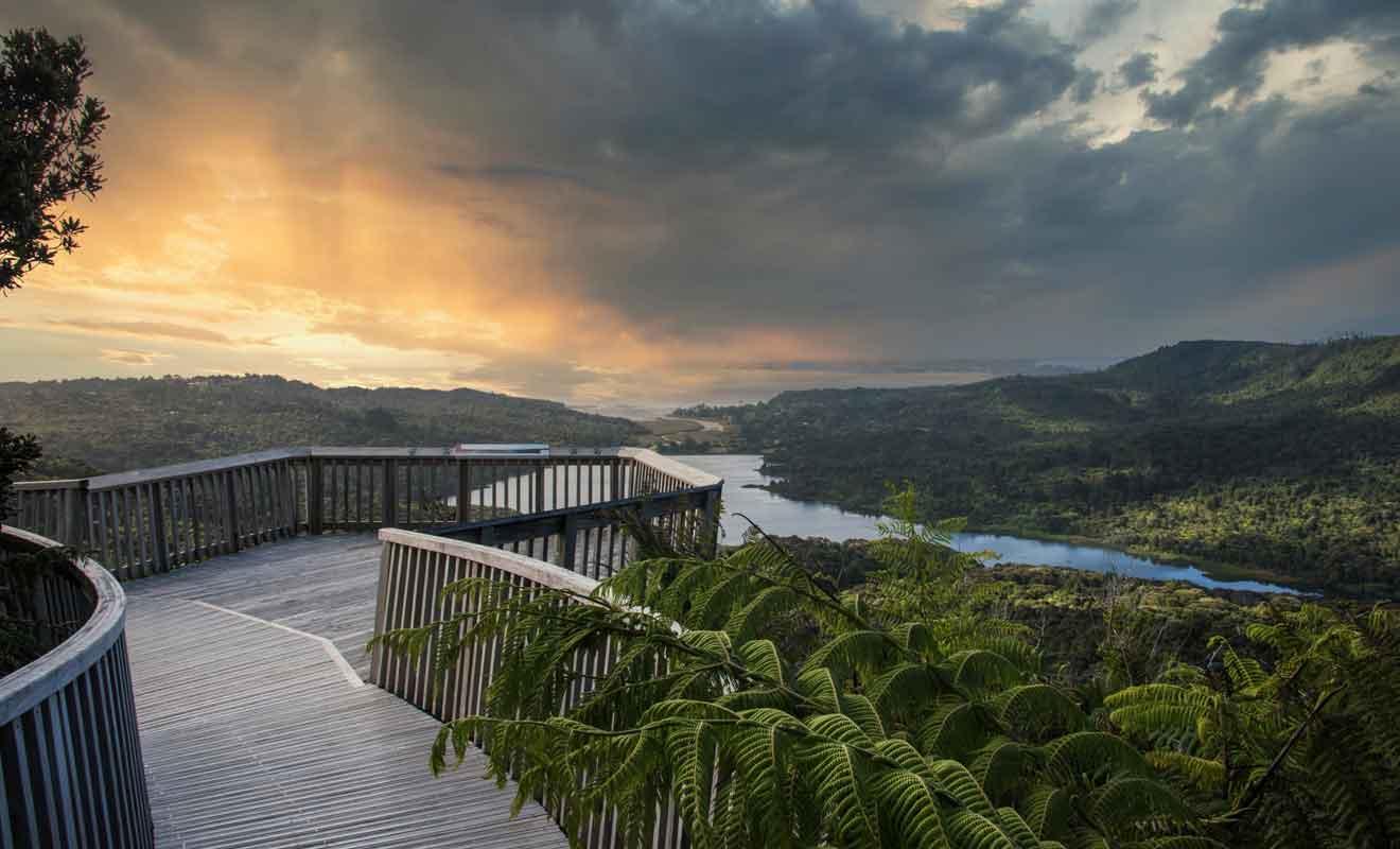 Le parc régional des Waitakere Ranges est célèbre pour ses randonnées et ses cascades.