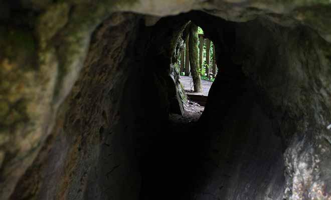 On trouve de nombreuses grottes et cavernes sur les sentiers de la forêt. La plupart peuvent être explorées sans risque du moment qu'aucun panneau n'en interdit l'accès.