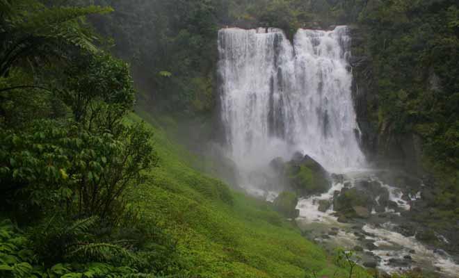 Que vous aimiez ou non visiter des grottes de Waitomo, pensez à faire un détour pour admirer les chutes de Marakopa.