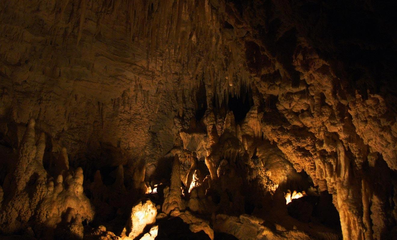 La visite des Glowworm caves permet de s'enfoncer profondément sous la surface. Un dédale de grottes constellées de stalactites et de vers luisants attend les explorateurs.