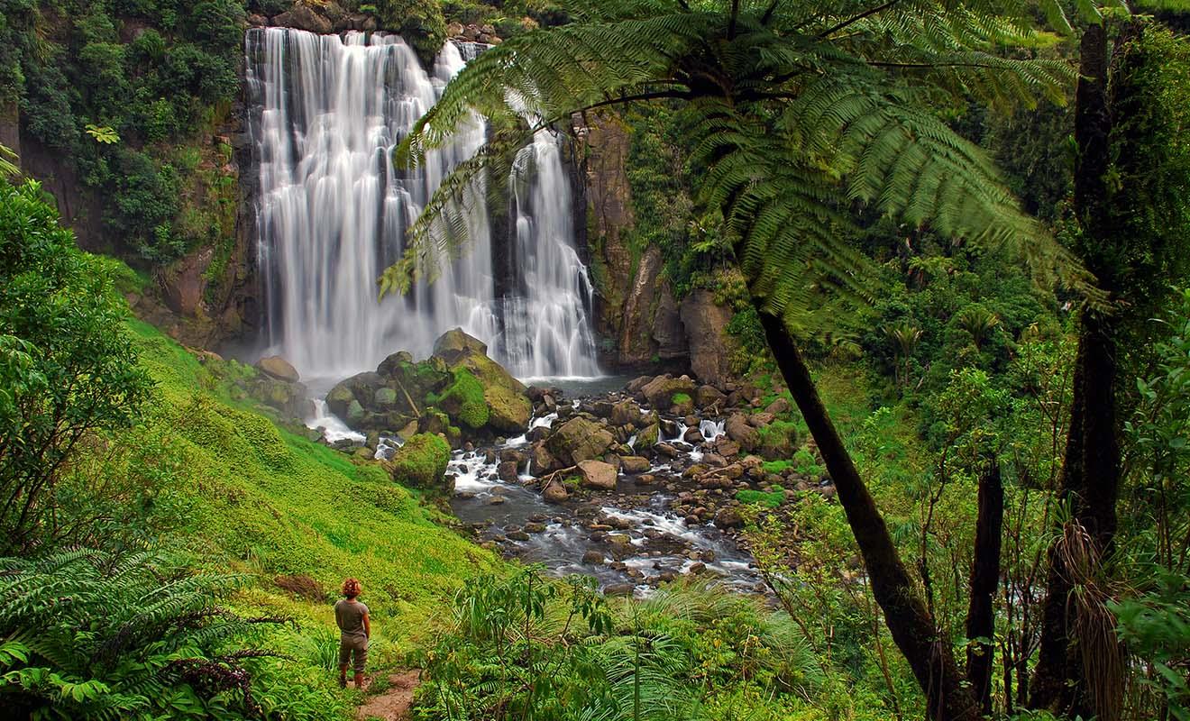 Les grottes de Waitomo ne sont pas la seule attraction de la région. Les Marokopa Falls offrent un bon exemple des merveilles qui se cachent en forêt.