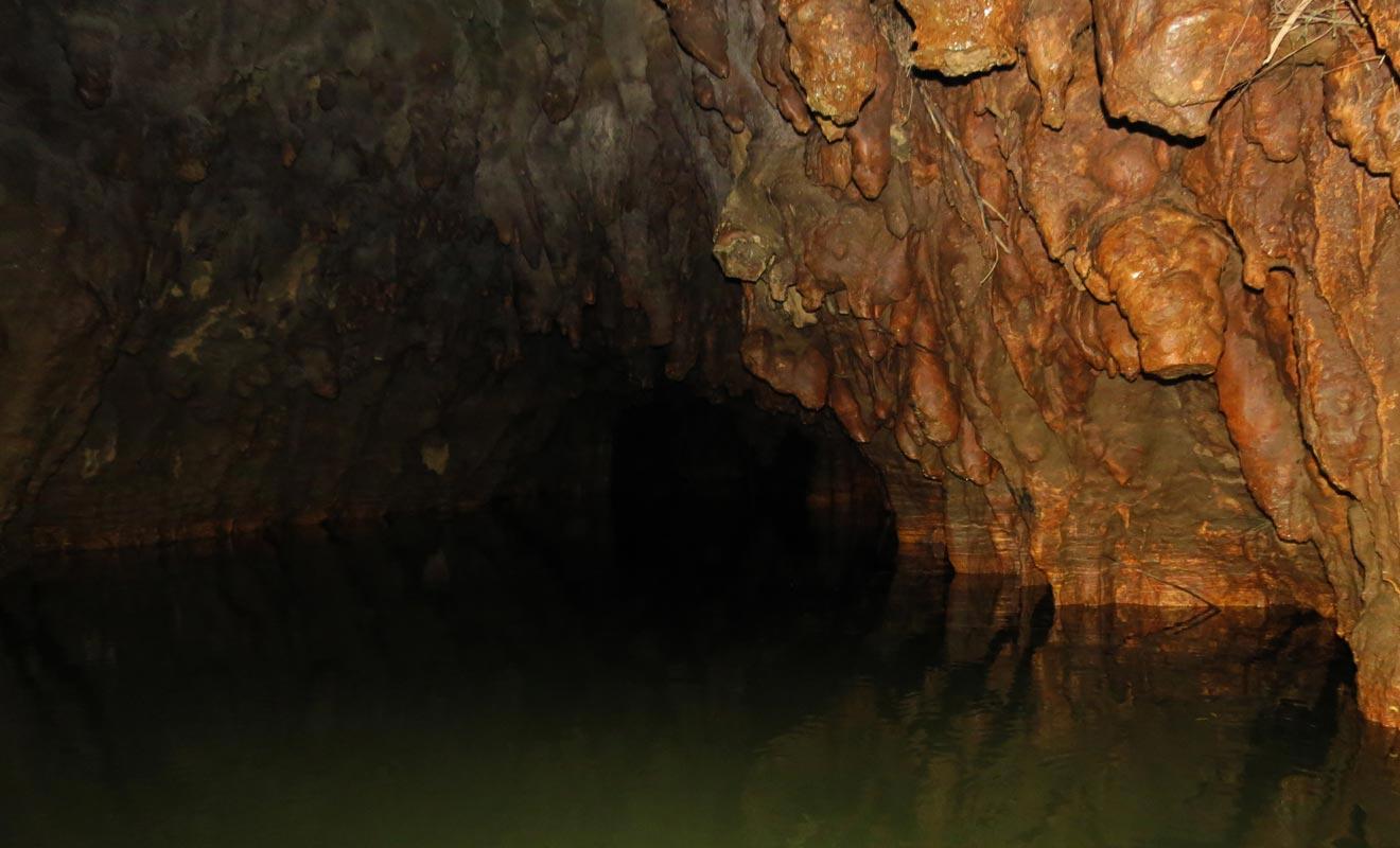 La rivière souterraine de Glowworms Caves traverse des grottes remplies de vers luisants avant de rejoindre la surface à l'air libre.