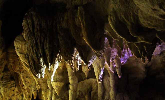 On ne compte plus les stalactites qui couvrent le plafond des grottes. Il y en a souvent des milliers dans une même salle.