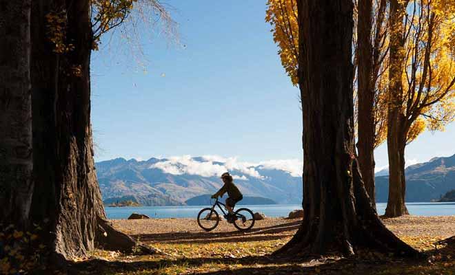 Il existe des centaines de kilomètres de piste de vélo dans l'Otago, et les débutants comme les pro y trouvent leur compte.