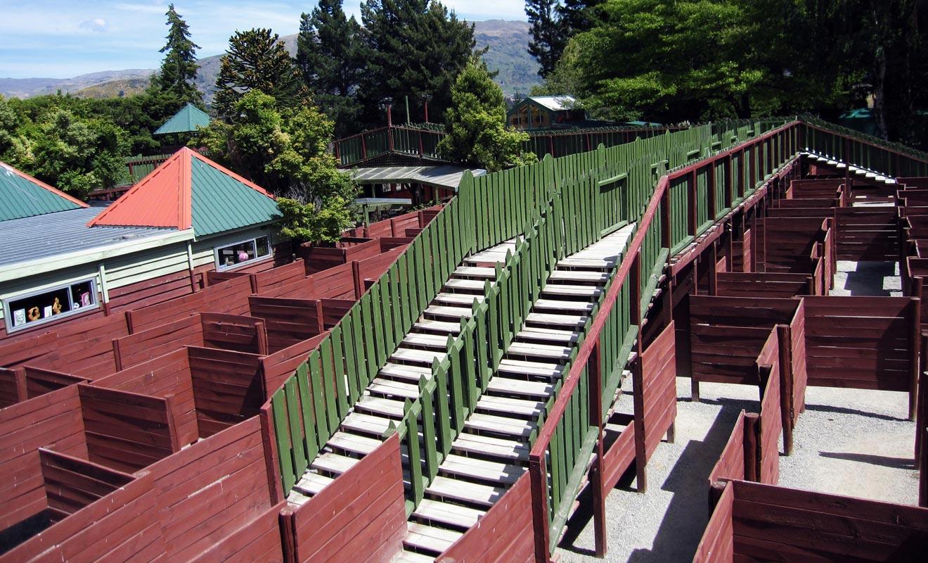 Le record pour achever le labyrinthe en plein air de Puzzling World est de 25 minutes. Il faut pour cela rejoindre les 4 extrémités en respectant un ordre établi.