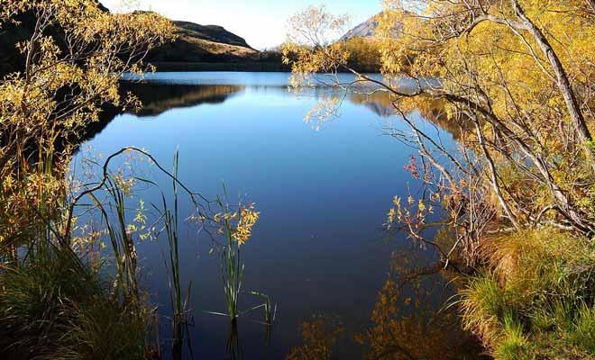 L'une des plus belles excursions de Wanaka mène au lac diamant.
