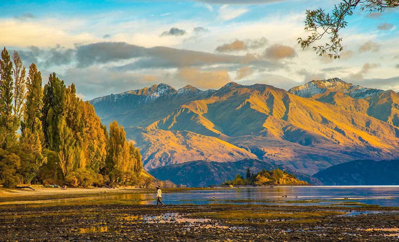 La Nouvelle-Zélande reste magnifique même durant la basse saison, en partie parce que les arbres ne perdent pas leurs feuilles.