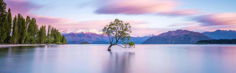 Wanaka est une ville de l'Otago célèbre pour ses paysages.