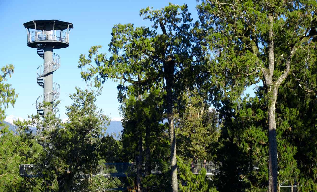 La plateforme la plus haute se trouve à 40 m au-dessus du sol.