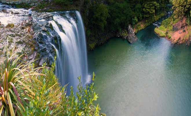 Les Whangarei Falls sont des chutes particulièrement photogéniques qui donnent naissance à la rivière Hatea. Certaines personnes s'y baignent en dépit de l'interdiction.