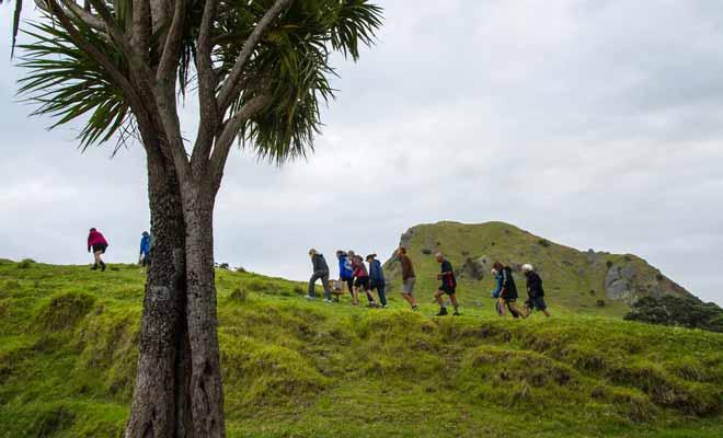 Pour assister à une relâche de Kiwis, il faut se tenir informé ou s'inscrire à une mailing-list sur le site d'une association. Vous serez alors tenu au courant des événements à venir.