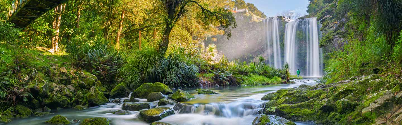 Whangarei Falls dans le Northland