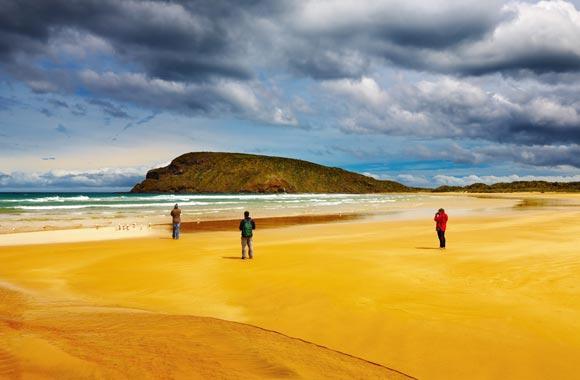 Abel Tasman es el Parque Nacional favorito de los neozelandeses. Está idealmente situado en la punta de la Isla Sur.
