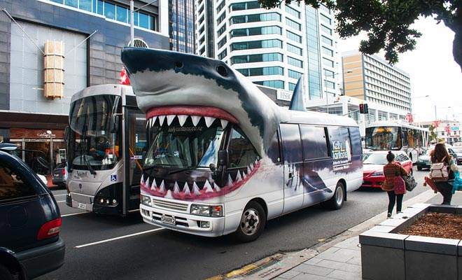 Dit is de pendelbus naar het aquarium van Kelly Tarlton. Je hebt het gegeten, je kunt haaien waarnemen, maar ook zwemmen met hen!