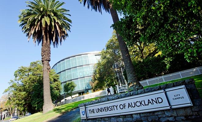 El campus principal de Auckland se encuentra a poca distancia del centro de la ciudad. Es un campus de estilo anglosajón con pequeñas casas dedicadas a la enseñanza de muchas especialidades.