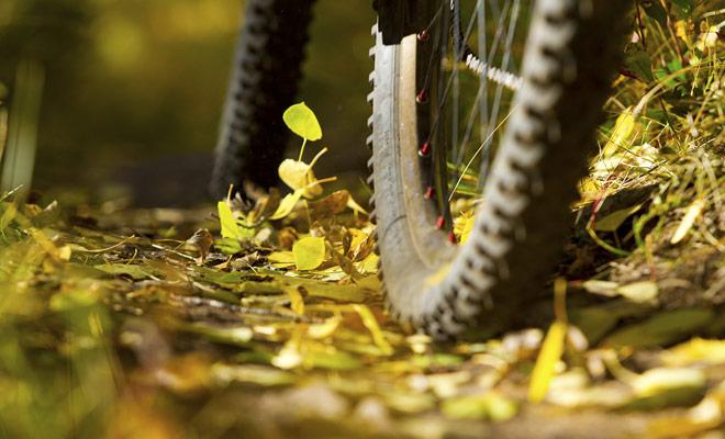 La elección del modelo de bicicleta de montaña no es sólo una cuestión de sensación o diseño. Hay tipos de bicicletas adecuadas para cada terreno, y usted tendrá que aprender sobre la condición de los senderos antes de alquilar una bicicleta en una tienda de Queenstown o Rotorua.