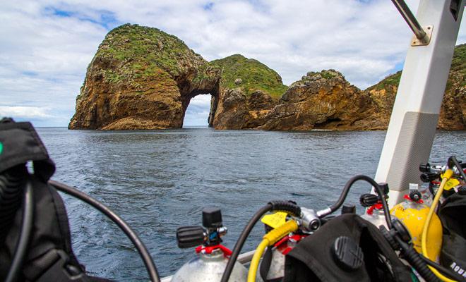 Als u in het Whangarei gebied bent, kunt u genieten van een duikdoop. Het kleine stadje Tutukaka en de Poor Knight Islands zijn slechts 28 km (een half uur rijden).