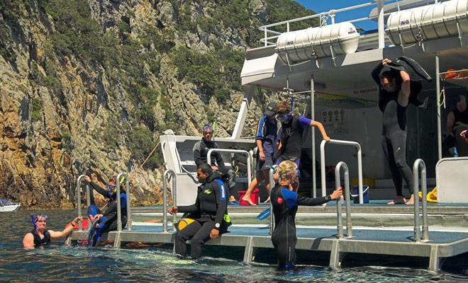 Tussen elke duik van 30 tot 40 minuten kunt u aan boord van de boot klimmen en lunchen op de brug.