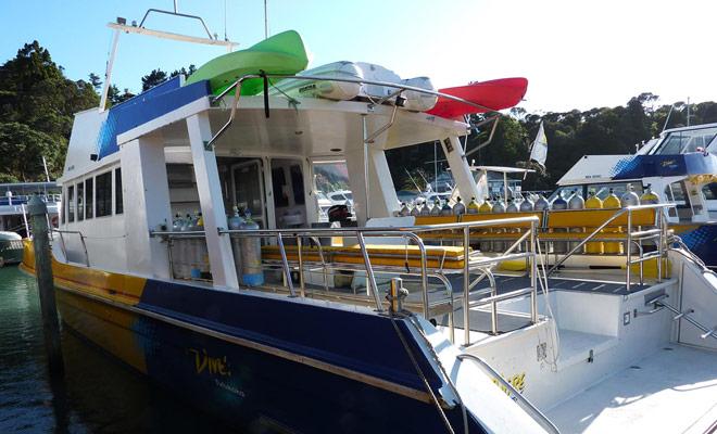 Duik Tutukaka heeft het monopolie van duiken in de Poor Knight Islands en het bedrijf is herhaaldelijk verkozen tot de beste in Nieuw-Zeeland.