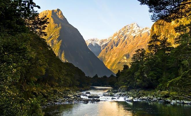 Debido a que el país fue el último descubierto por el hombre, Nueva Zelanda tiene un ecosistema único y muchas especies animales únicas en el mundo.