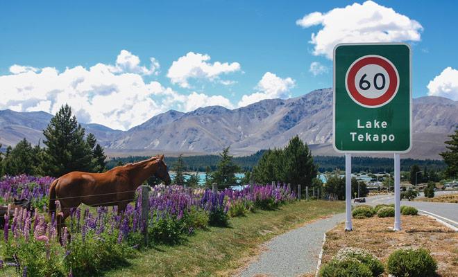 En un país donde la conducción se hace a la izquierda, uno esperaría encontrar distancias en millas, pero Nueva Zelanda ha adoptado el sistema métrico y las señales de tráfico expresan sus distancias en kilómetros.
