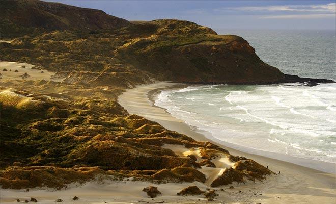La playa de St Clair es la más frecuentada por los surfistas. Pero hay muchas playas en la vecindad sin necesariamente alejarse del centro de la ciudad.