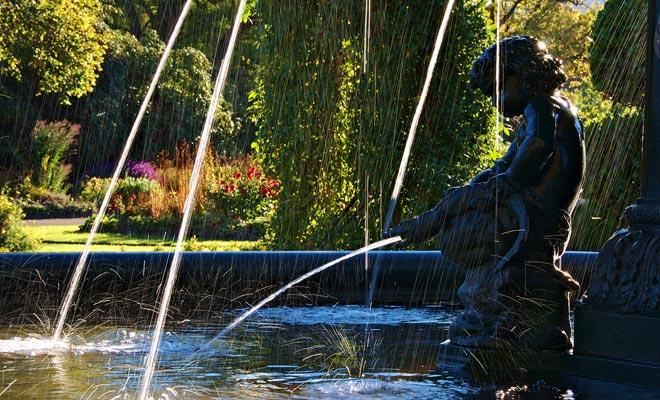 El Jardín Botánico de Dunedin está cerca del centro de la ciudad y cubre 22 hectáreas. Una parte importante se dedica a los rododendros.