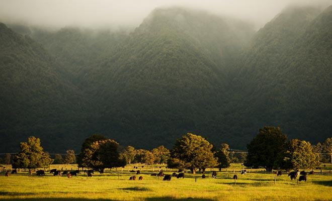 Werken op de boerderij kan soms moeilijk zijn. Maar als je je hoofd opheft om zo'n landschap te overwegen, moet je de vermoeidheid snel vergeten.
