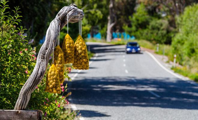 El concepto de la caja de la honradez es vender productos en el lado de la carretera, dejando una caja de efectivo para pagar desatendido. Esto lo dice todo acerca de la mentalidad de los neozelandeses.