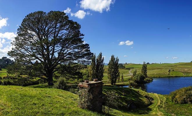 De eik die uitkijkt op de heuvel was niet oorspronkelijk aanwezig. Het werd elders in het land ontworteld en ter plaatse herplant.