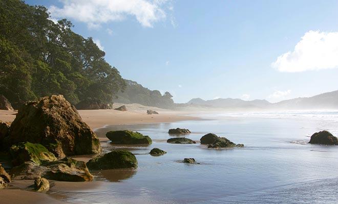 Hot Water Beach is groot genoeg om je lang te zoeken zonder te vinden. Maar de lente is in de buurt van rotsachtige uitkanten.