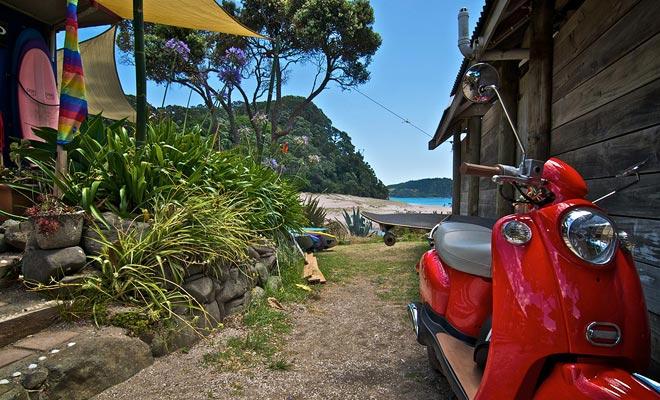 La tienda alquila tablas de surf y le permite reservar clases de surf.