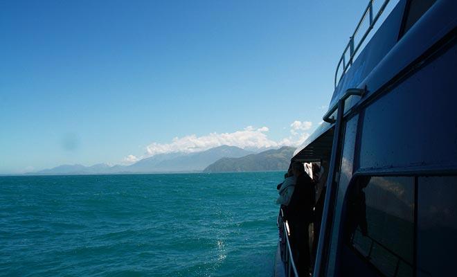 El canto de las ballenas es increíblemente poderoso. Los barcos que cruzan la península utilizan micrófonos submarinos para recoger la señal y facilitar la observación de estos mamíferos gigantes.