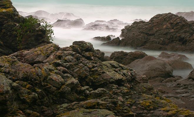 De ochtendmist voegt een fantastische noot toe aan de rommelige kust van Kaikoura.