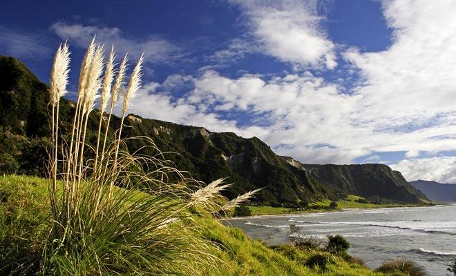 Se dice a menudo que la Isla del Sur se debe preferir para una primera estancia. Incluso si los paisajes montañosos son menos espectaculares, sería erróneo descuidar la Isla Norte, que es al mismo tiempo la más dinámica y la más interesante desde el punto de vista cultural.