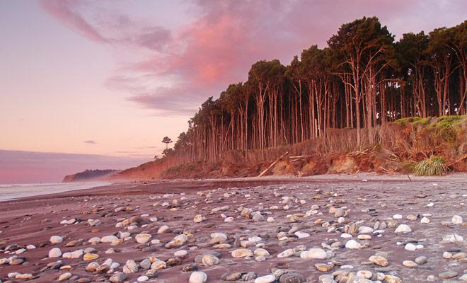 Las playas de la West Coast están desiertas y llenas de guijarros. El poder de la corriente y los escombros que la basura de la playa no son perfectos para la natación.
